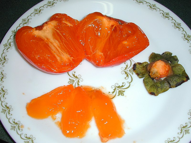 Persimmon and Segments