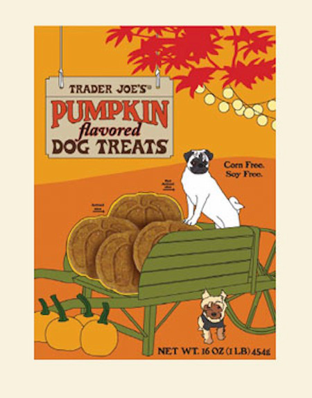 97581-pumpkin-dog-treats